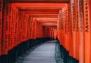 Не дръж онова, което си отива, не гони това, което е дошло –  Мъдростта на японските пословици