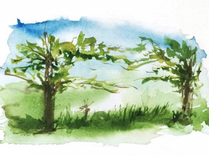 FlowArte Watercolor Trees