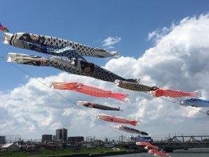 180505c 300x225 - 第11回小岩鯉のぼり祭り