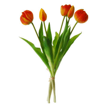 Peony-tulip-bundle-orange