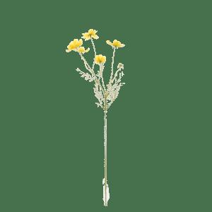 FlowerDutchess-Cosmea-geel-2