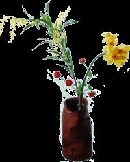 FlowerDutchess-lente-3-takken-in-o-my-bag-2