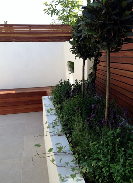 low maintenance small garden design ideas Small garden design London Clapham Balham ideas low
