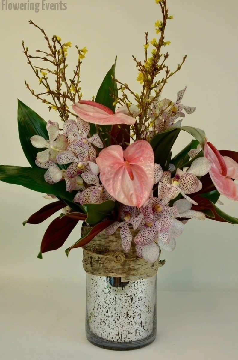 Pink anthurium, protea, and mokara orchids with forsythia