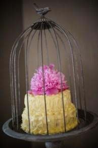 cake cage