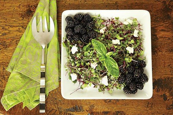 James Farmer recipes, blackberry salad