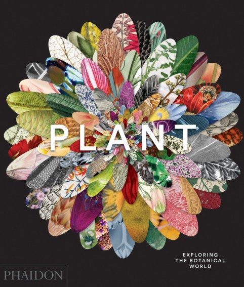 plant-cover