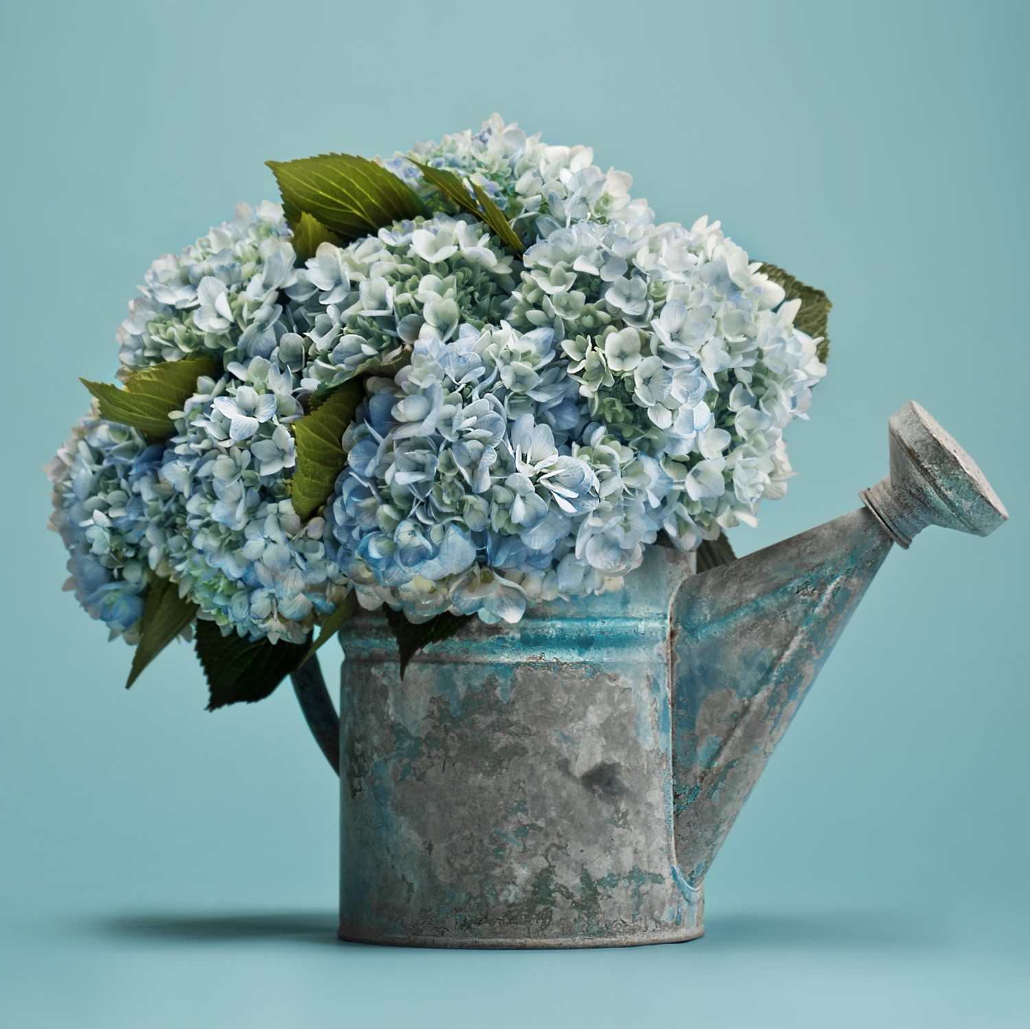 4c5173b971 Our Favorite Hydrangea Arrangements