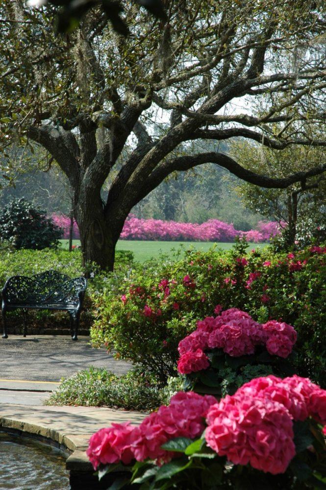 bellingrath garden oriental dragon christmas lights | Southern Comfort at Bellingrath Gardens - Flower Magazine