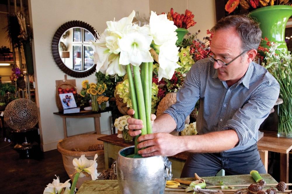 white amaryllis arrangement, amaryllis topiary