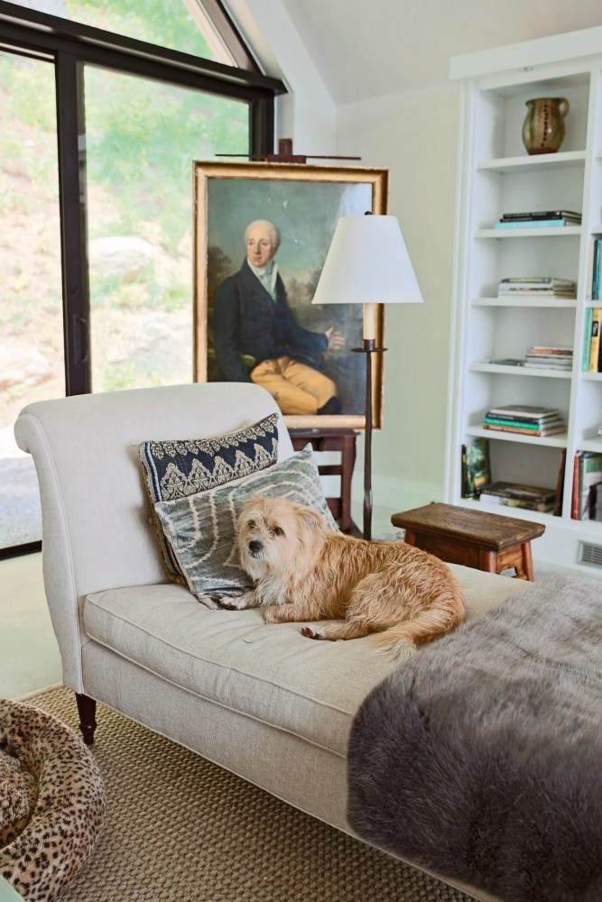 Pet Friendly Interior Design Ideas By Dkor: Dog-Friendly Design (and Designers)