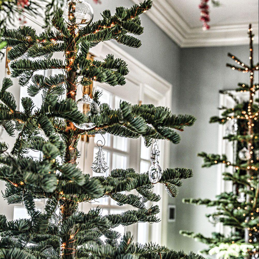 Simon Pearce christmas party, silvertip fir