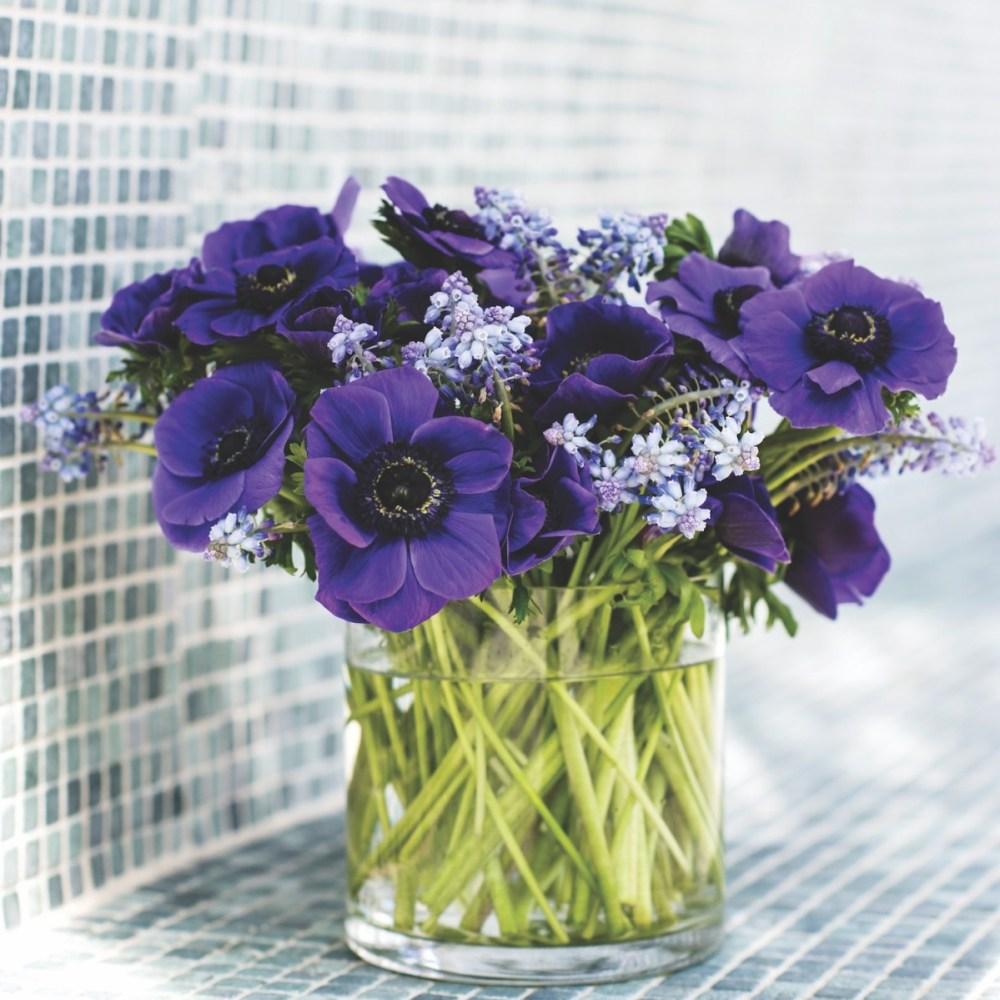 Christina Springfield, Nouveau Flowers
