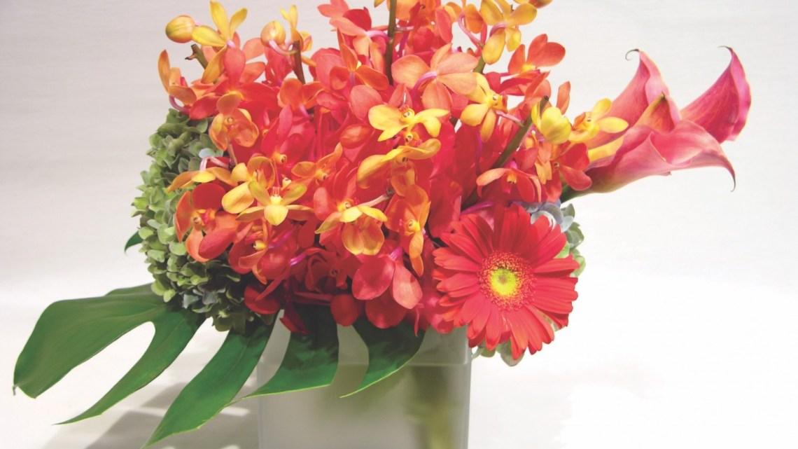 Orchid Arrangements, Orchid flower arrangements