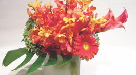 Orchid Arrangements, Orchid flower arrangements