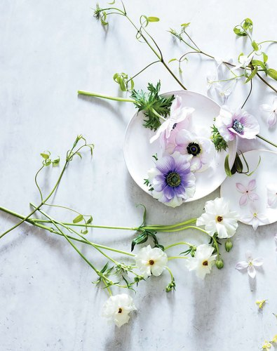 Spring Awakening Arrangement, Ariella Chezar how-to
