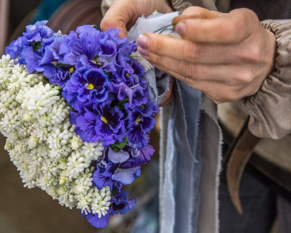 Close up of hands tying a wide periwinkle blue ribbon around a bunch of flowers that is bright purple violets on one half, and white flowers on the other half
