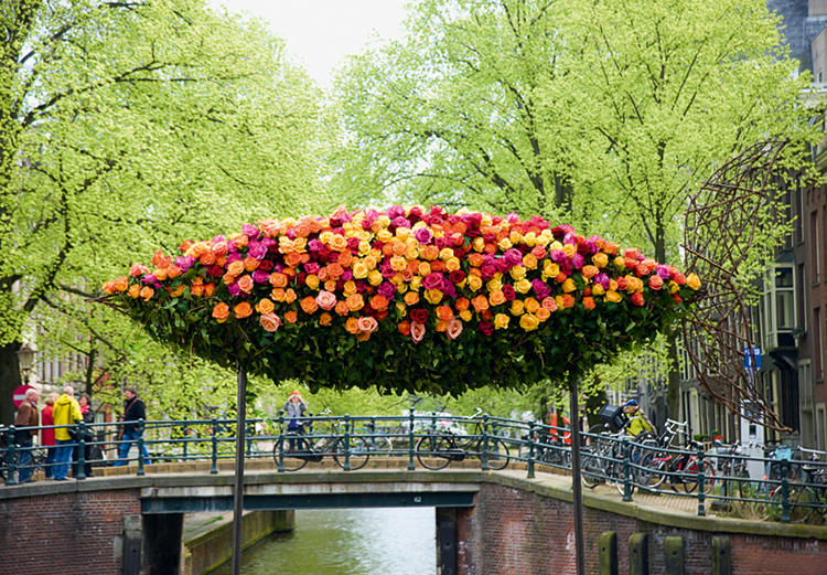 Public floral display of an Amsterdam canal featured in Blooms