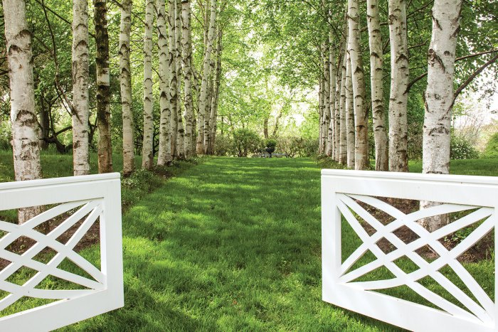 A low white wooden gate opens onto a lawn-covered path flanked by Himalayan birch trees on either side in this revived Fletcher Steel garden design.