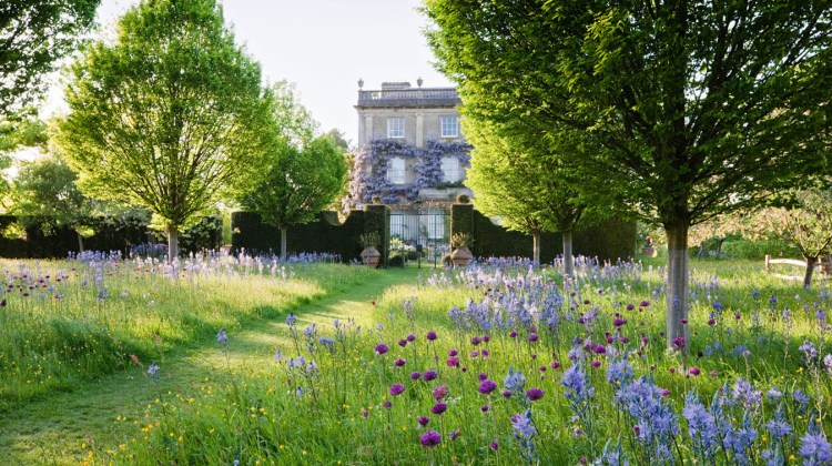 The Wild Flower Meadow at Highgrove House in May 2009. Highgrove is the private home of The Prince of Wales and The Duchess of Cornwall. Photo submitted