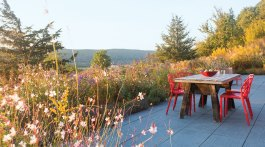 Red metal chairs around the patio table add a bright pop of color amongst the soft colors of the meadow landscape design.