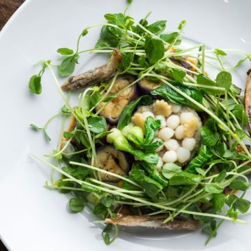 Where to eat vegetarian in New York, Dirt Candy