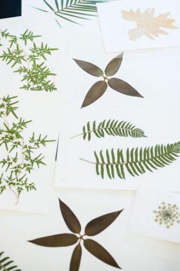 Ryan Miller's pressed botanicals