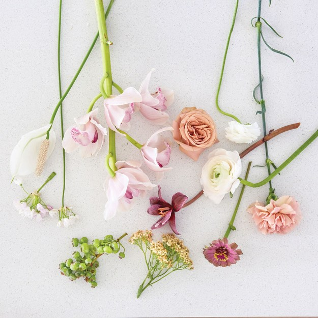 Flowers for Ikebana arrangement