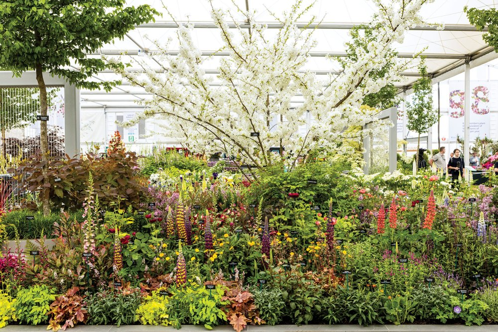 Great Pavilion of the Chelsea Flower Show