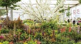 Great Pavilion of Chelsea Flower Show