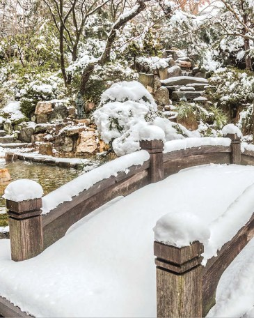 snow, foot bridge