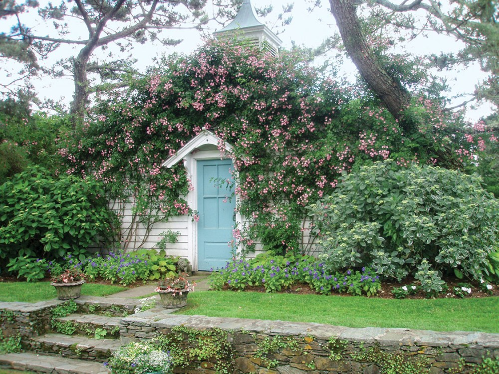 garden shed, climbing roses, estate of Oatsie Charles