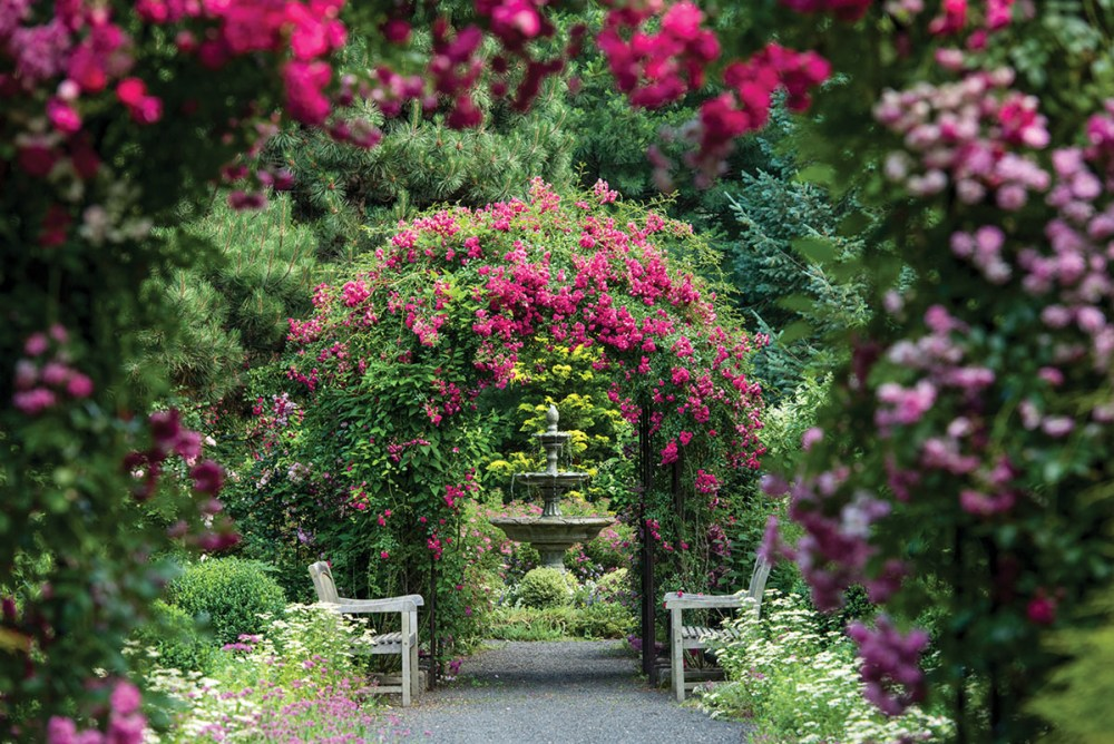 A view through the rose-bowered arches at Plantsville Pines, leading to a 3-tiered splashing fountain