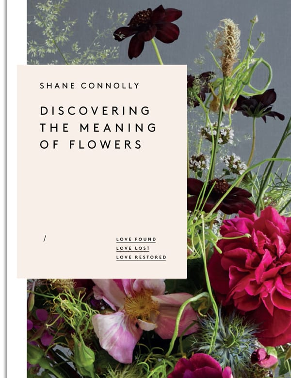 Meaning Flowers Book