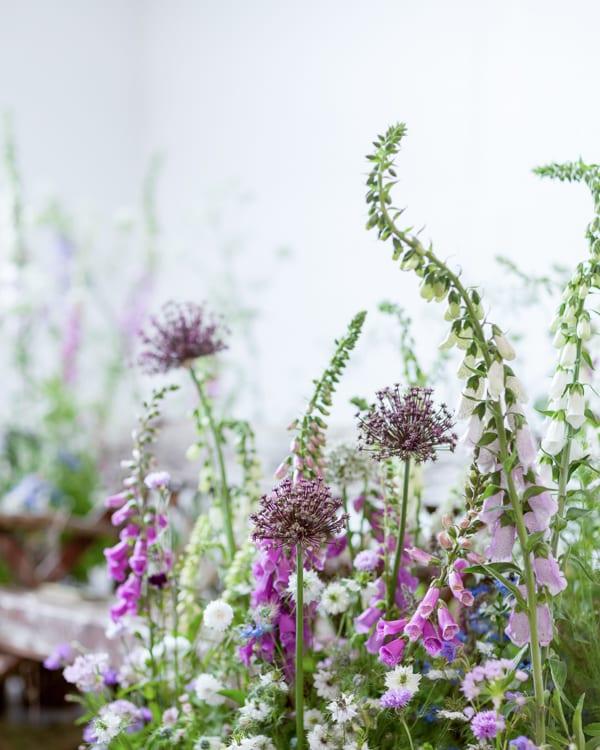 Image result for british flower week 2018