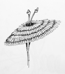 Flower sketch #15