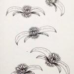 Flowerosity sketch #94