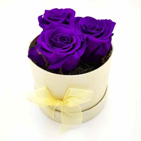 Rosenbox 3x Ewige Rose lila