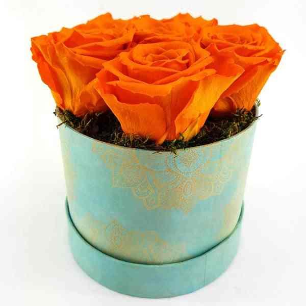 Ewige Rosen 6er Orange