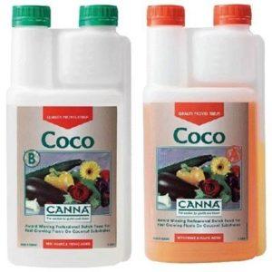 Cocco A+B Canna 2X1l