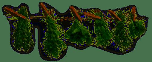 16e_random-herbs[1]
