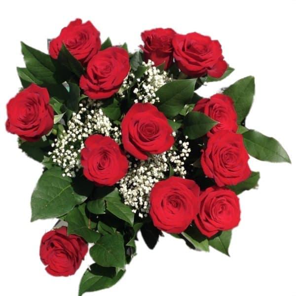 dozen red roses flowers avalon