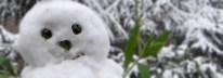 Snowman in a winter garden
