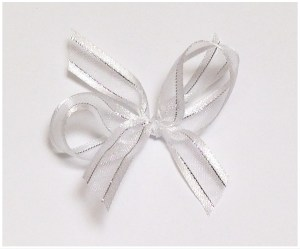 White organza with silver thread ribbbon