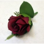Burgundy rose buttonhole