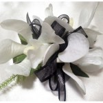 Orchids with black organza ribbon.