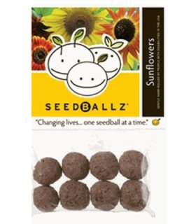 SeedBallz – Sunflowers