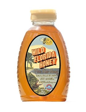 Wild Florida Honey 16oz (100% pure, natural, raw honey)