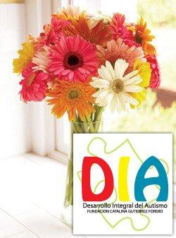 DIA daisies