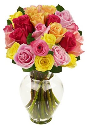 24 Long Stem Rainbow Roses, With Vase